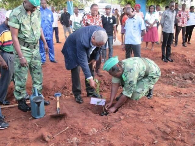 1er juin 2015, des officiels mettent des plants en terre dans la banlieue de Lomé (Crédit photo :